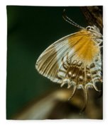 Exotic Butterfly On Tree Bark Fleece Blanket