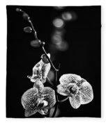 Exotic Orchid Bw Fleece Blanket