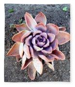 Exotic Succulent Plant - Pink Lilac Fleece Blanket