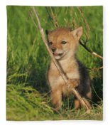 Exploring The Outside World Fleece Blanket