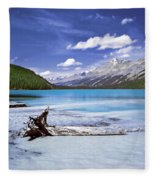 Exterior Decorations Fleece Blanket