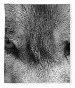 Eyes Of The Wild Fleece Blanket