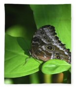 Eyespots On The Closed Wings Of A Blue Morpho Butterfly Fleece Blanket