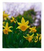 Daffodils Sky Fleece Blanket