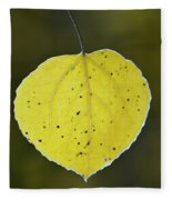 Fall Aspen Leaf Fleece Blanket