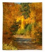 Fall Aspen Trail Fleece Blanket