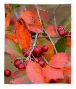 Fall Color 1 Fleece Blanket