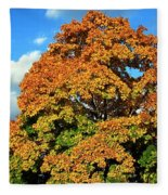 Fall Colors 19 Fleece Blanket