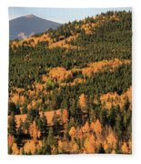 Fall Colors At Rocky Mountain National Park Fleece Blanket