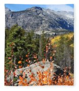 Fall Colors In Rocky Mountain National Park Fleece Blanket