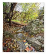 Fall Creek View Fleece Blanket