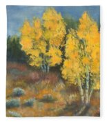 Fall Delight Fleece Blanket