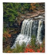 Fall Falls 2 Fleece Blanket