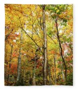 Fall Foliage On The Hike Up Mount Monadnock New Hampshire Fleece Blanket