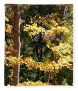Fall Forest 3 Fleece Blanket