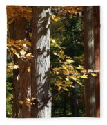 Fall Forest 4 Fleece Blanket