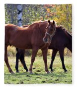 Horses Fall Grazing Fleece Blanket