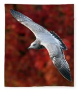 Fall Gull Fleece Blanket