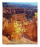 Fall In Bryce Canyon Fleece Blanket