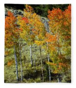 Fall In Colorado Fleece Blanket