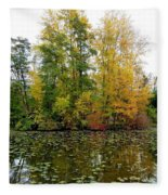 Fall In Kaloya Park 10 Fleece Blanket