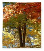 Fall In Kaloya Park 4 Fleece Blanket