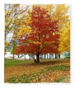 Fall In Kaloya Park 5 Fleece Blanket