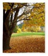 Fall In Kaloya Park 8 Fleece Blanket