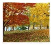 Fall In Kaloya Park 9 Fleece Blanket
