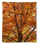 Fall In Kayloya Park 2 Fleece Blanket