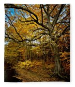 Fall In Pennsylvania Fleece Blanket