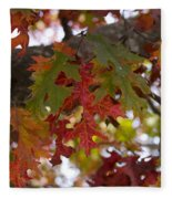 Fall In Virginia Fleece Blanket