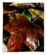 Fall Into Fall Fleece Blanket