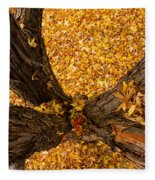Fall Fleece Blanket