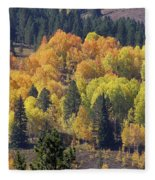 Fall Lands In Western Wyoming Fleece Blanket