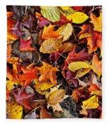 Fall Leaves On Forest Floor Fleece Blanket by Elena Elisseeva
