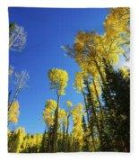 Fall Light Fleece Blanket