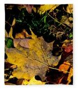 Fall On The Ground Fleece Blanket