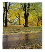 Fall Series 15 Fleece Blanket