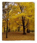Fall Series 5 Fleece Blanket