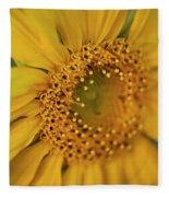 Fall Sunflower Avila, Ca Fleece Blanket