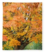 Fall Tree Art Print Autumn Leaves Fleece Blanket