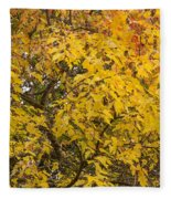 Fall Tree Leaves 2 Fleece Blanket