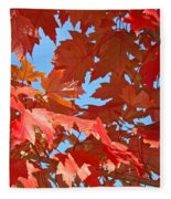 Fall Tree Leaves Red Orange Autumn Leaves Blue Sky Fleece Blanket