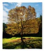 Fall Tree Silhouette Kent Falls State Park Connecticut Fleece Blanket
