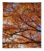 Fall Tree With Star Burst Fleece Blanket