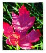 Fallen Maple Leaf Fleece Blanket