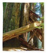 Fallen Redwood Trees Forest Fleece Blanket