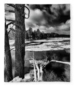 Fallen Trees In The Moose River Fleece Blanket