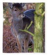 Fallow Deer Fawn Fleece Blanket
